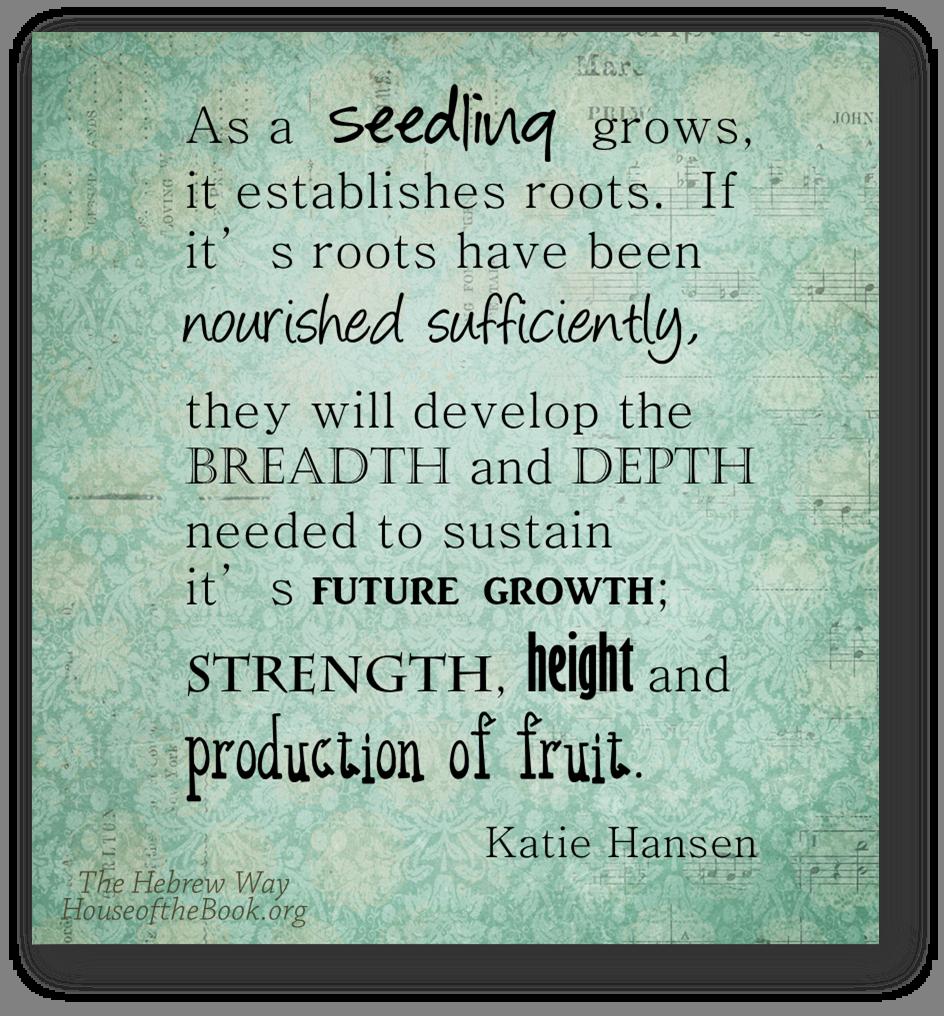 Seedling roots fruit